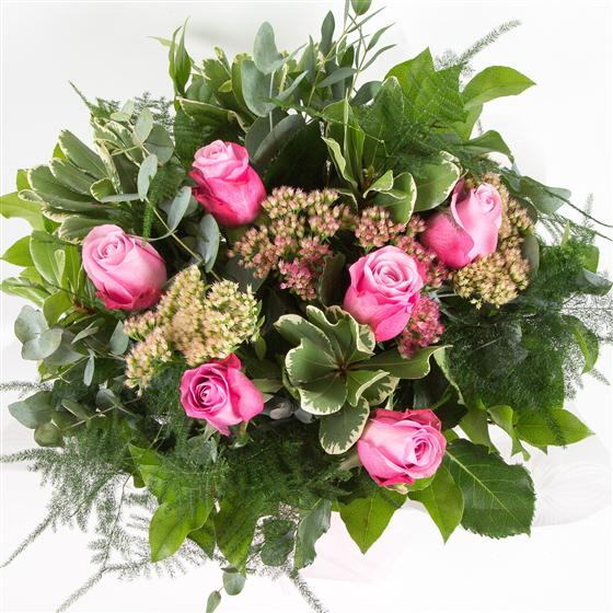 Six Long Stemmed Pink Roses All About Flowers Florist Swindon